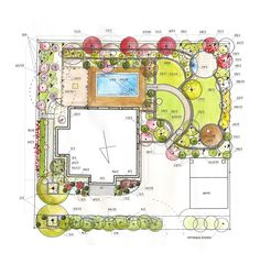 projekt ogrodu plansza z doborem roślin