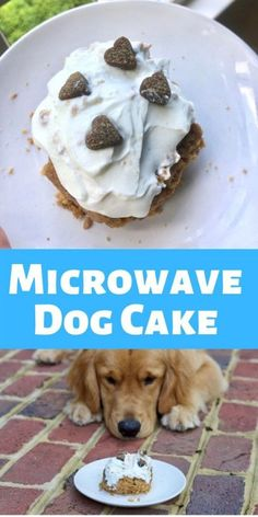Make this super simple pupcake in the microwave in less than 5 minutes. Lathered in yogurt and peanut butter for a dog's tasty treat. Homemade dog cakes are perfect to celebrate your dog.