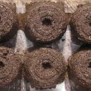 Super Cheap Seed Starters — Soil blocks let you start your plants indoors, weeks before you can put them into the ground. Container Gardening, Gardening Tips, Organic Gardening, Flower Gardening, Indoor Gardening, Paper Pot, Vegetable Garden Planning, Recipe 30, Organic Fertilizer