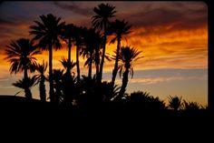 Sunset in Sahara Dessert