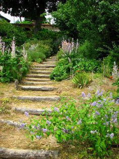 put formed steps down a hill, Florida idea