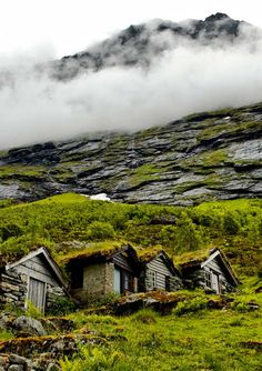 tiny farm houses norway photo by surabaya johny. Photo only but I mean...  Can I have one?!?