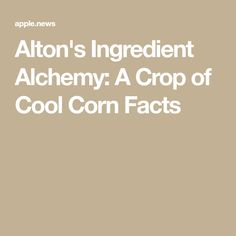 Alton's Ingredient Alchemy: A Crop of Cool Corn Facts