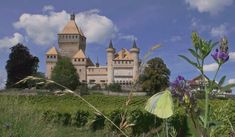 Switzerland, Palace, Medieval, Mansions, House Styles, Photography, Home Decor, Castles, Lino Prints