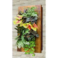 Plant a vertical garden with the GroVert Living Wall Planter. Hang garden art and harvest fresh herbs from your hanging wall garden. Living Wall Planter, Indoor Living Wall, Vertical Planter, Vertical Gardens, Vertical Garden Plants, Herbs Indoors, Plant Wall, Cool Plants, Fake Plants