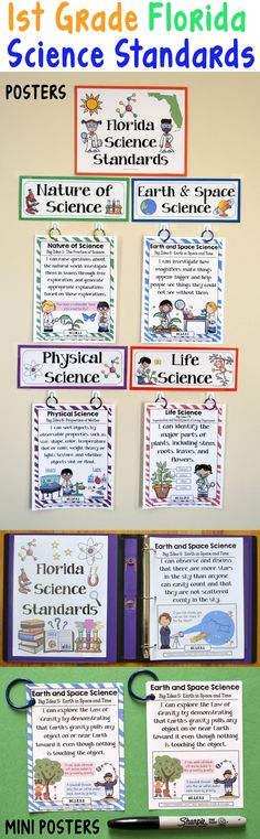 1st Grade Florida Science Standards - This bundle includes posters in various formats with I can statements and associated example illustrations for each of the Florida Science Standards.