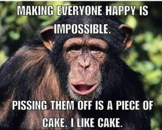 85 Happy Memes to Brighten Your Day and Make You Smile - Funny Monkeys - Funny Monkeys meme - - The post 85 Happy Memes to Brighten Your Day and Make You Smile appeared first on Gag Dad. Funny Animal Quotes, Funny Animal Pictures, Funny Animals, Funny Quotes, Funny Memes, Funny Monkey Memes, Hilarious Jokes, 9gag Funny, Funny Captions