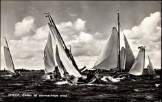 Ansichtskarte / Postkarte Sneek Friesland, Zeilen bij stormachtige wind