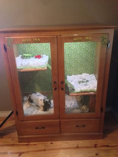 Here is an ADORABLE indoor rabbit hutch, formerly a wardrobe. Could also be done with a similar style entertainment center. @Mary Chappell