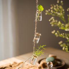 Glass Planter Rope Hanging Small Planter Long (Set of Hanging Glass Planters, Hanging Plants, Indoor Plants, Plastic Planter Boxes, Window Planter Boxes, Corten Steel Planters, Mini Bottles, Glass Bottles, Glass Vase