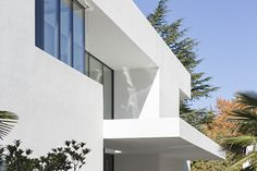 Image 8 of 52 from gallery of House M / monovolume architecture + design. Courtesy of monovolume architecture + design