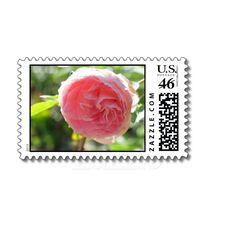 Pink Rose Bloom Postage Stamp from Zazzle.com