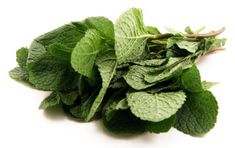 Health Benefits Of Mint Leaves: Discover 10 amazing mint nutritional benefits. You'll also learn about a variety of mint side effects. Mint Leaves Benefits, Happy Hour Menu, Fruits And Veggies, Vegetables, Fresh Mint, Herb Garden, Health Benefits, Asparagus, Harvest