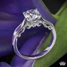 Verragio 4 Prong Knife-Edge Solitaire Engagement Ring #Whiteflash