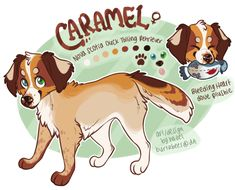 caramel+ref+by+burtzbees.deviantart.com+on+@DeviantArt