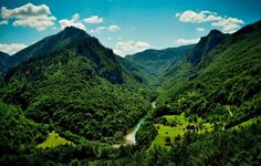Mountain Wallpaper Jungle Green