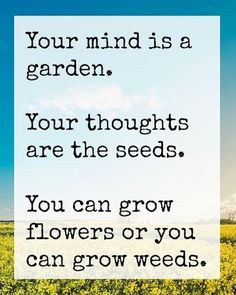 Your mind matters. Join me in trying to find a cure for #Alzheimers so we can all use our minds to grow spiritually, mentally, physically, emotionally.