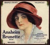 Anaheim Brunette Orange Citrus Crate Box Label Art Print