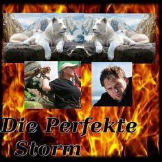 (71) Miljoen Stemme Vir Steve Artist, Movie Posters, Fictional Characters, Film Poster, Popcorn Posters, Film Posters, Fantasy Characters, Posters, Artists