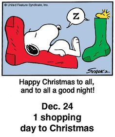 peanuts christmas countdown panels for 2015 - Yahoo Image Search Results Days To Christmas, Peanuts Christmas, Charlie Brown Christmas, Charlie Brown And Snoopy, Christmas Quotes, Christmas Humor, Christmas Ideas, Merry Christmas, Snoopy Cartoon