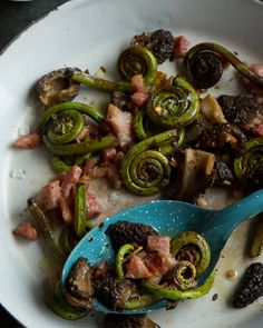 Fiddlehead Fry-Up with Morel Mushrooms