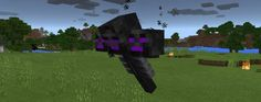 Мод Ender Wither 1.0, 0.17.0, 0.17.1, 0.16.0, 0.16.1