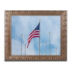 Trademark Fine Art Red, White and Blue Canvas Art by David Ayash Gold Ornate Frame, Size: 16 x 20