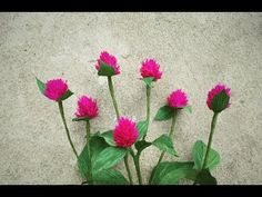 ABC TV | How To Make Globe Amaranth Paper Flowers From Crepe Paper - Cra...