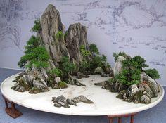 http://www.bonsaiforum.ru/forum/index.php?act=attach&type=post&id=16137