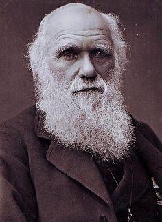 https://upload.wikimedia.org/wikipedia/commons/b/bf/Charles_Darwin_photograph_by_Herbert_Rose_Barraud,_1881.jpg