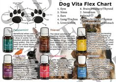 Young Living Essential Oils: Dog Paw Vita Flex.  Treat pets naturally and keep toxic chemicals away from Man's Best Friend!  Click to order.  https://www.youngliving.com/signup/?isoCountryCode=US&sponsorid=1483174&enrollerid=1483174