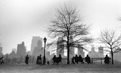 NY. Central Park South silhouette, 1955 © Ruth Orkin
