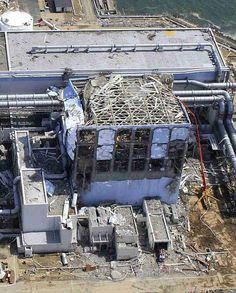 Fukushima Daiichi Nuclear Power Plant disaster aftermath image 6