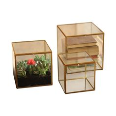 Add a lovely, delicate look to enhance your casual room décor. This set of three St. Thomas Square Glass Boxes offers a fabulous alternative to conventional storage and display. You'll adore the tastef...  Find the St. Thomas Square Glass Boxes - Set of 3, as seen in the #Mysteriously Modern Collection at http://dotandbo.com/collections/mysteriouslymodern?utm_source=pinterest&utm_medium=organic&db_sku=101218