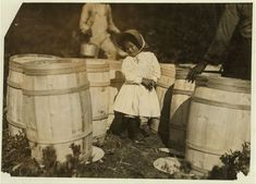 size: Photographic Print: Mary Christmas, Only Made to Pick Cranberries Spilt at the Barrels by Her Grandfather by Lewis Wickes Hine : Old Photos, Vintage Photos, Lewis Hine, Mary Christmas, Vintage Black Glamour, Falmouth, 4 Year Olds, African American History, Black History