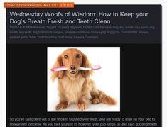 Wednesday Woofs of Wisdom: How to Keep your Dog's Breath Fresh and Teeth Clean www.bionicdogblog.wordpress.com #BIONIC
