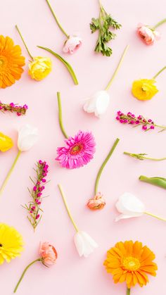iPhone-FloralMix.jpg 901×1,600 pixels