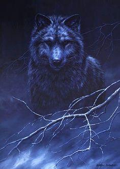 爱 I love Wolves.