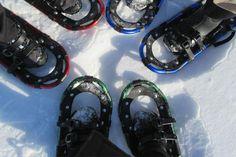 Guided Snowshoe Hike on Lake Ainslie Trail System Cape Breton, Nova Scotia, Island, Trail, Islands
