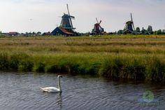 I mulini a vento di Zaanse Schans | PietrofotoGallery Zaanse Schans Windmills, Image Types, Top Artists, Amsterdam, Travel, Viajes, Destinations, Traveling, Trips