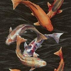 Koi karper vissen vlies behang Natural Instinct 781014