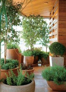varanda apartamento com vasos de plantas