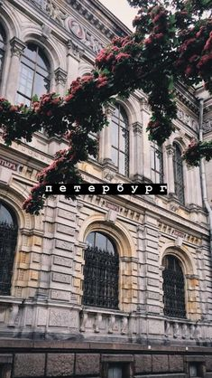 #saintpetersburg #санктпетербург #питер #обои