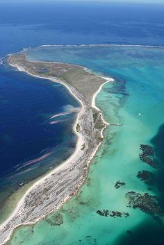 Na região entre Caravelas, sul da Bahia, e São Mateus, norte do Espírito Santo, a plataforma continental prolonga-se por mais de 200 quilôm...