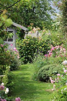 Overgrown garden pathways.