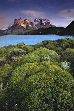 Cuernos del Paine at dawn from Lago Pehoe, Patagonia, Chile by Galen Rowell.