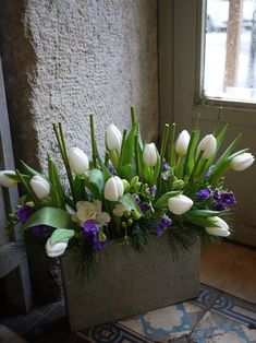 freesia, pois de senteur, tulipe