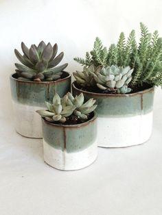 Cylinder Succulent Pot Set   Custom Listing for Erin #pottery #handmade #ceramics