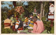 White Border Postcard Seminole Indian Camping Ground In The Everglades Florida Native Americana Seminole Indians, Seminole Florida, Camping World, Wild Ones, Nativity, North America, Native American, Painting, Pots