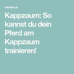 Kappzaum: So kannst du dein Pferd am Kappzaum trainieren!